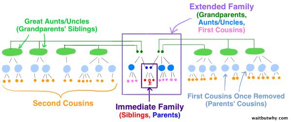 visual diagram explaining second cousins