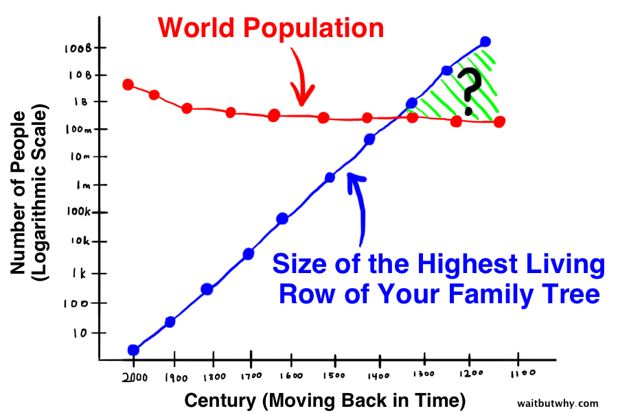 blue line showing size of highest living family tree increasing as you go back in time crossing a red line representing the world population declining as you go back in time