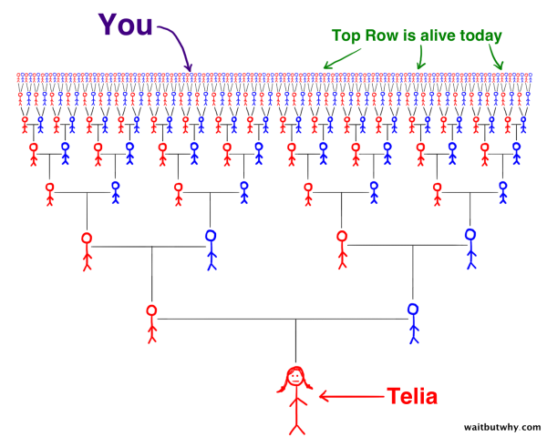 Telia Ancestor Cone showing you in the far top row with hundreds of other people alive today
