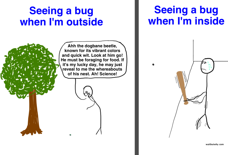 Seeing a bug Inside Vs. Outside