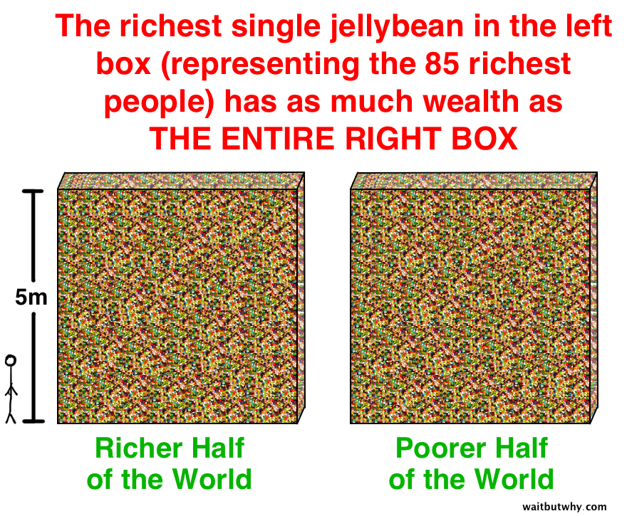 Richest jellybean
