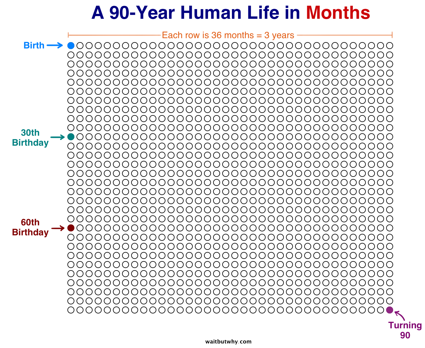 Weekly Life Calendar : Your life in weeks wait but why