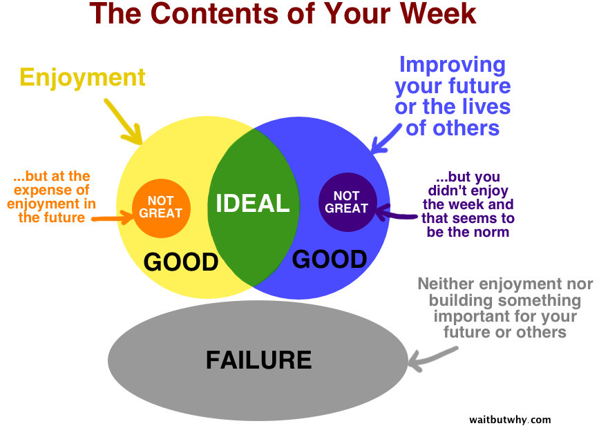 The Contents of Your Week