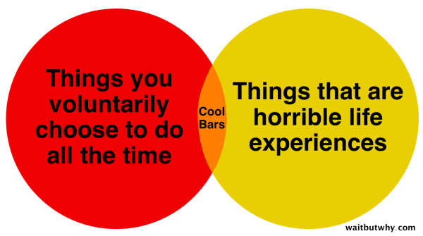 The thing about cool bars