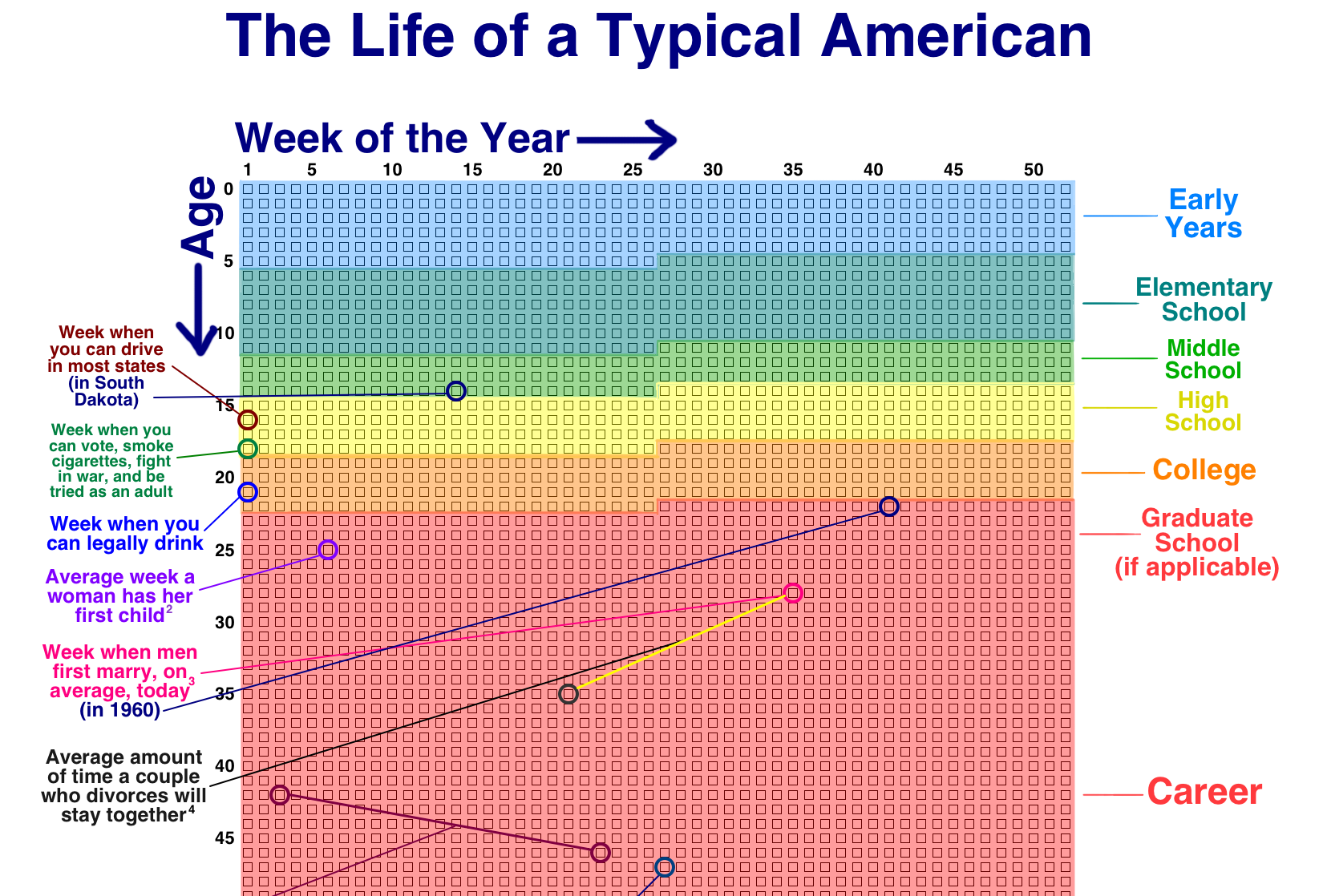 American Life in Weeks