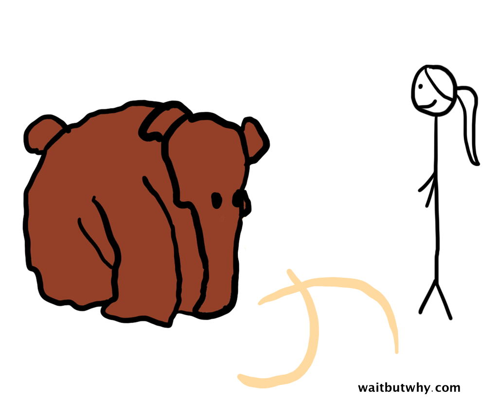 medium mammoth