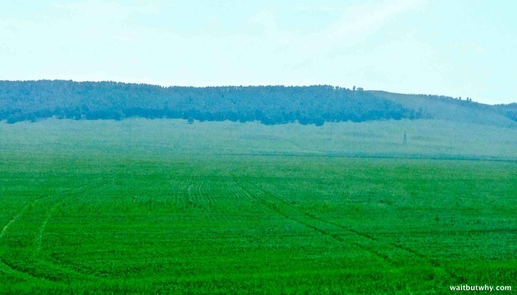 Grassy Siberia