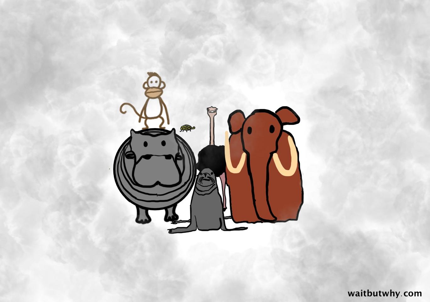 animals clump