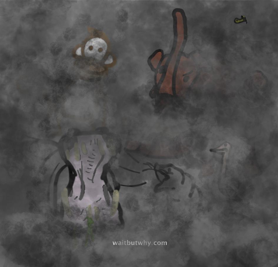 animals in fog