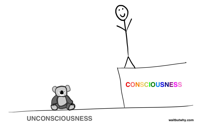 consciousness binary