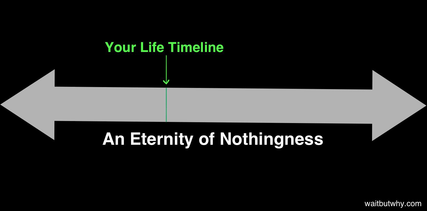 long timeline