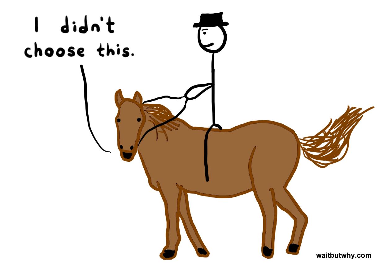 Horse hand