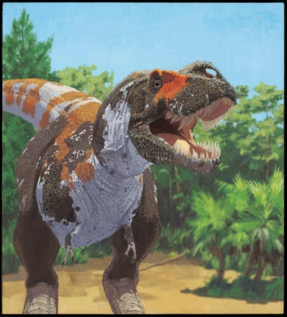 T-rex-120501