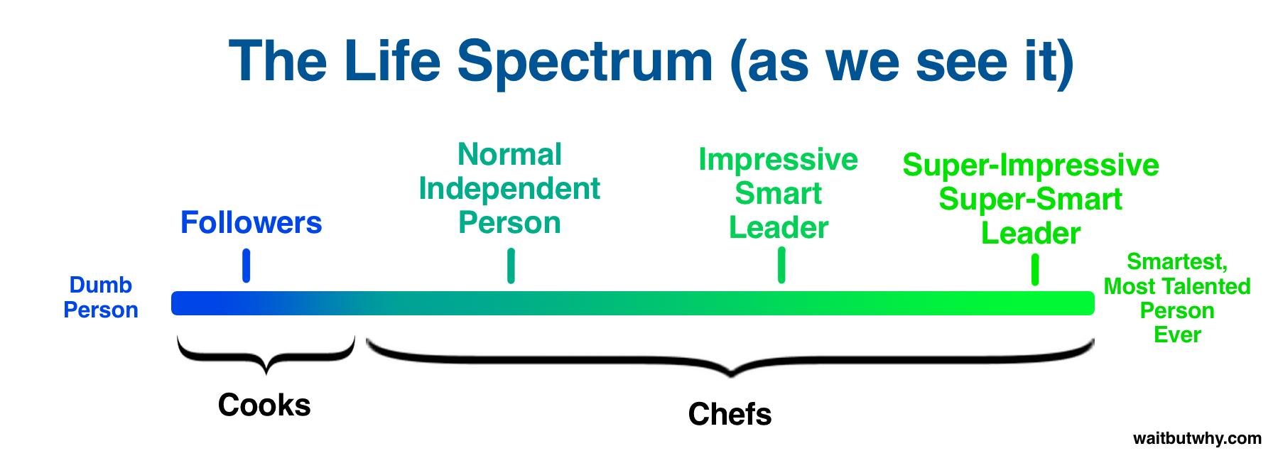 Chef-Cook Life Spectrum Skewed