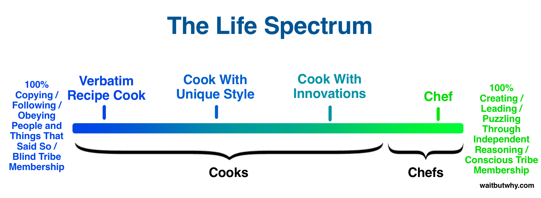 Chef-Cook Life Spectrum