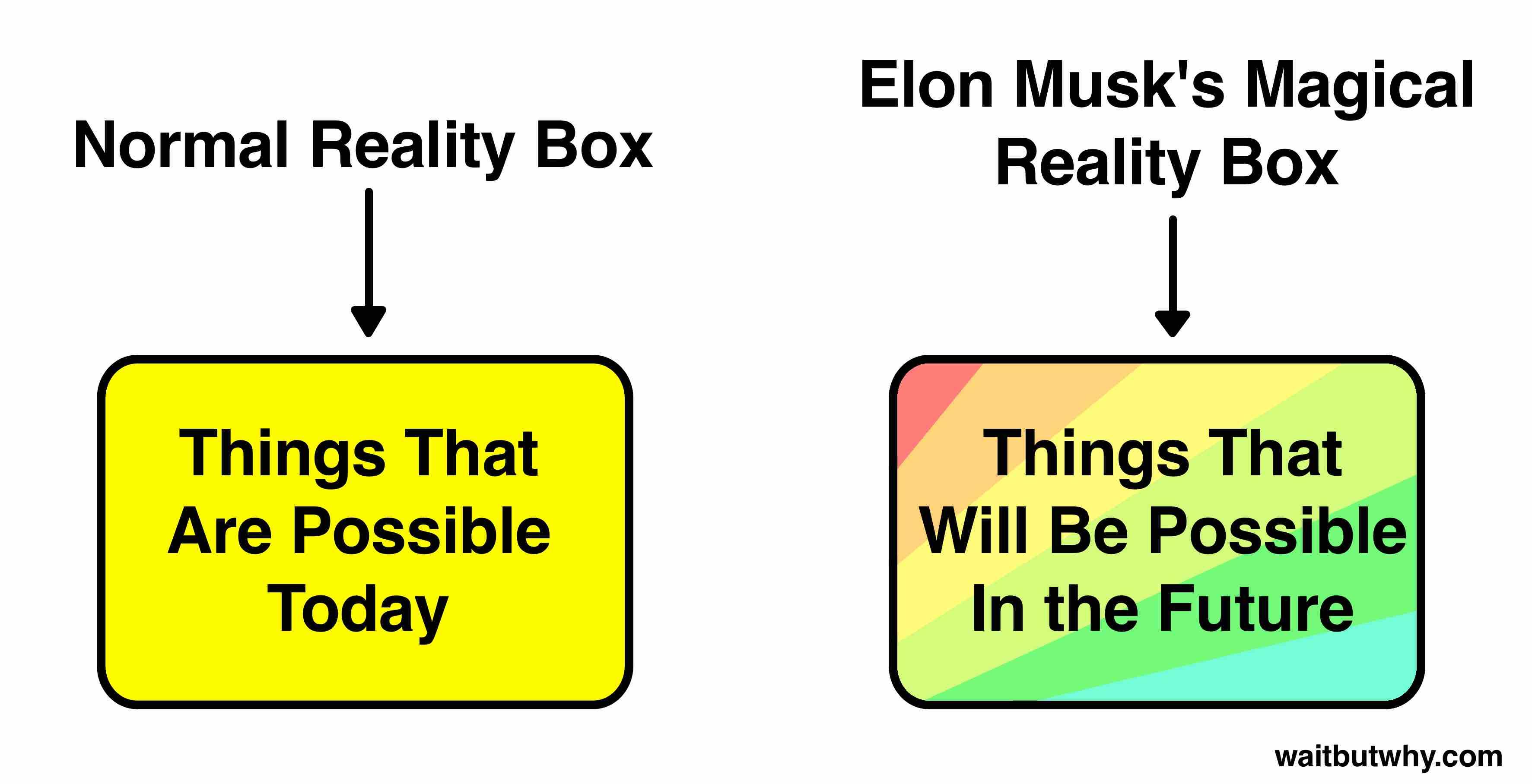 Musk Visionary 1
