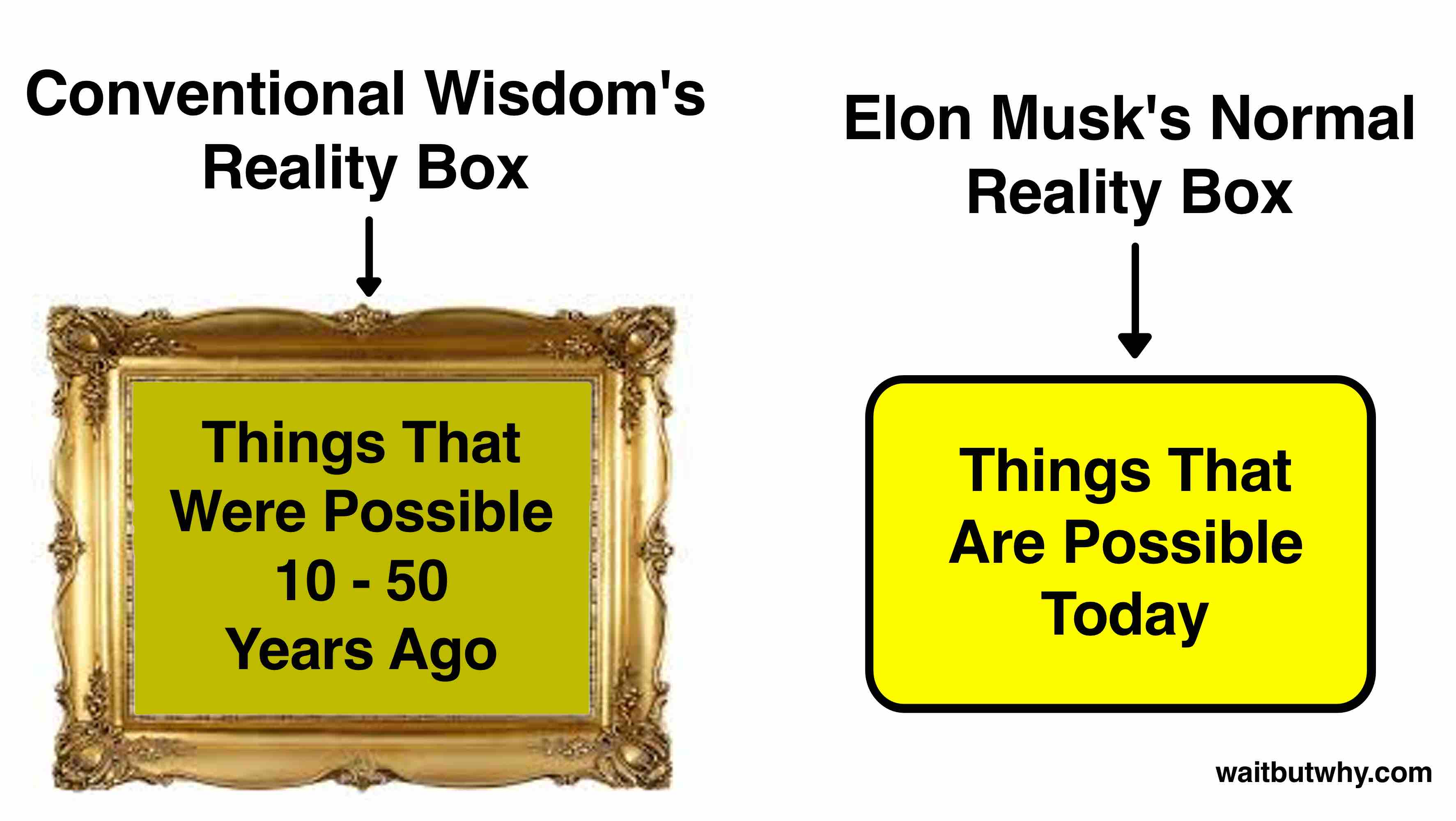Musk Visionary 2