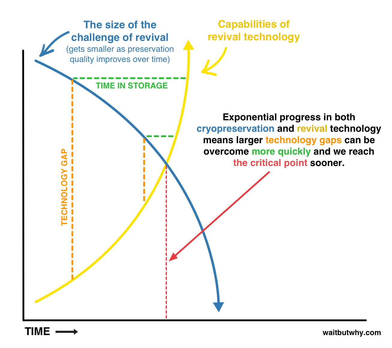 Cryonics big picture Exponential