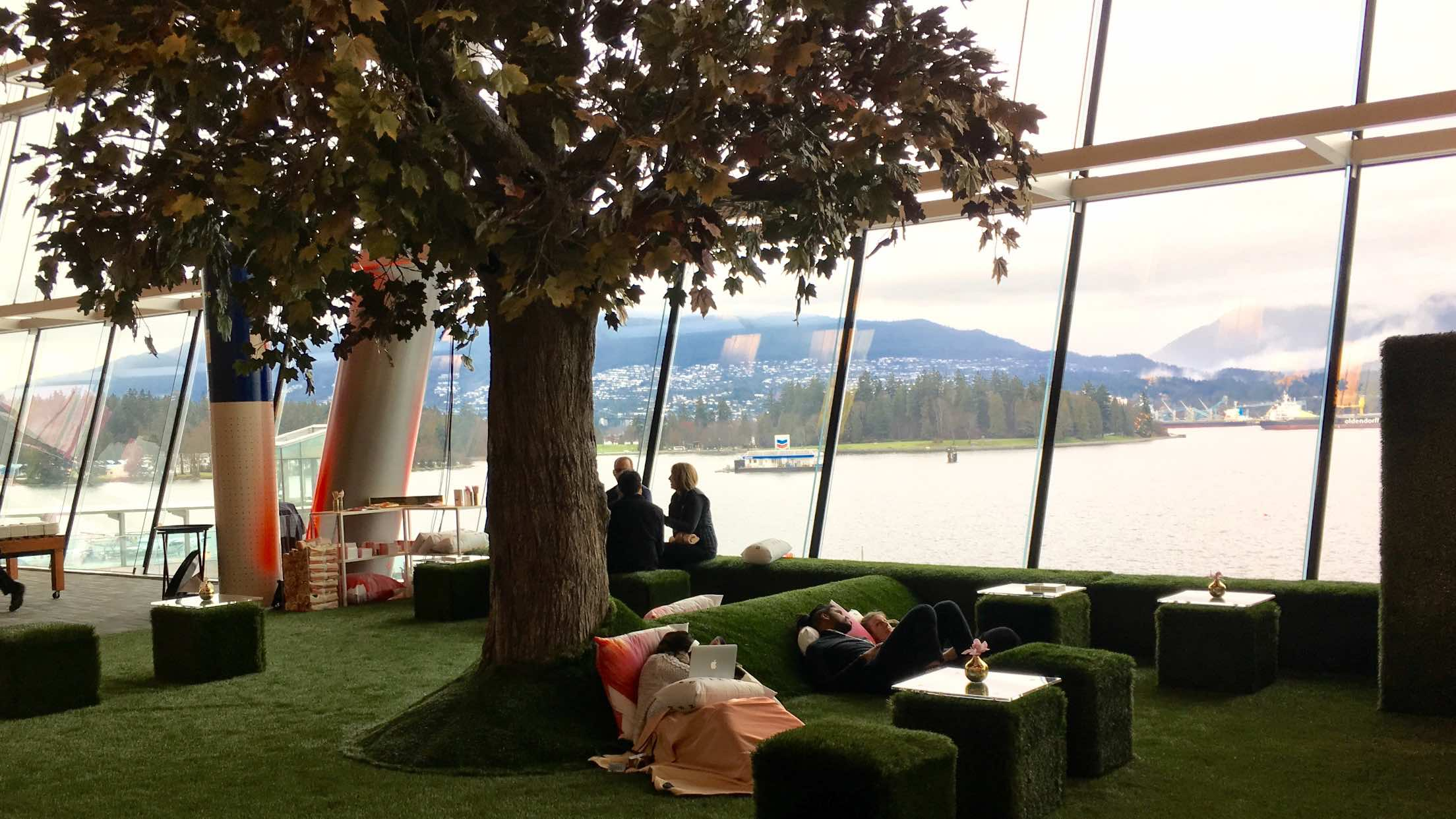 indoor lounge area with tree and faux grass and floor-to-ceiling windows