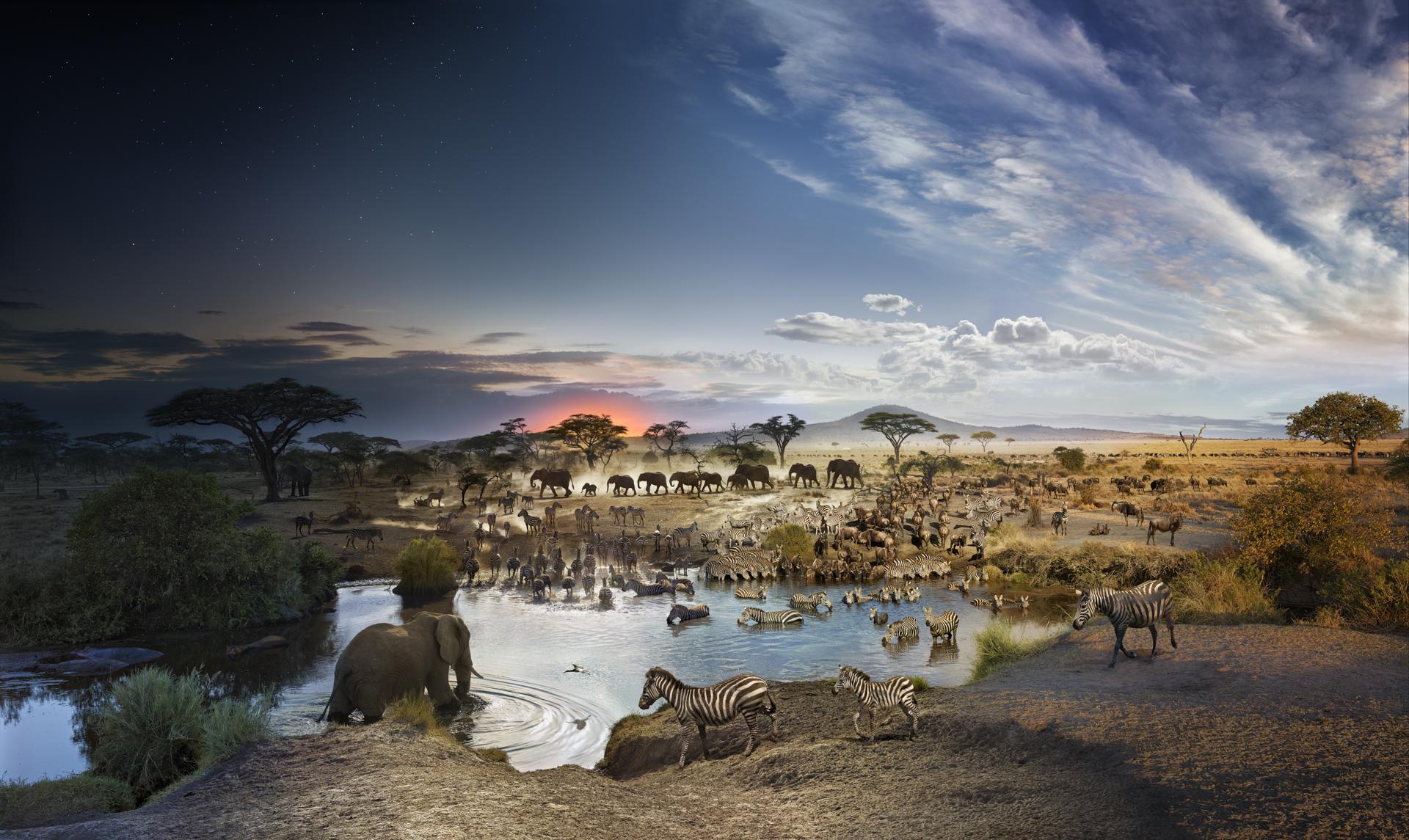 Serengeti National Park, Tanzania, Day to Night, 2015