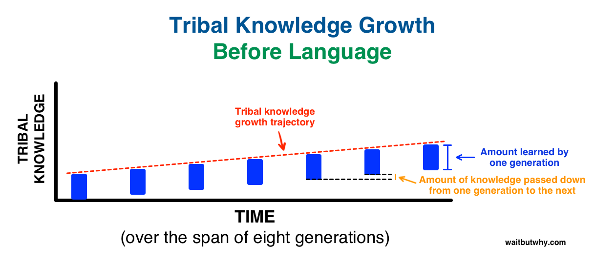 minimal tribal knowledge growth before language