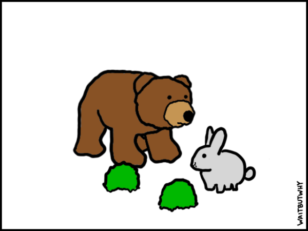 A cute bunny and two shrubs. And a bear that is now closer to the bunny.