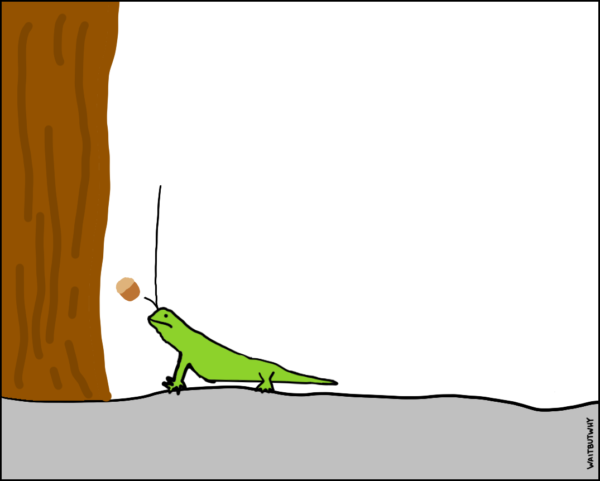Lizard getting hit in the head with the falling acorn