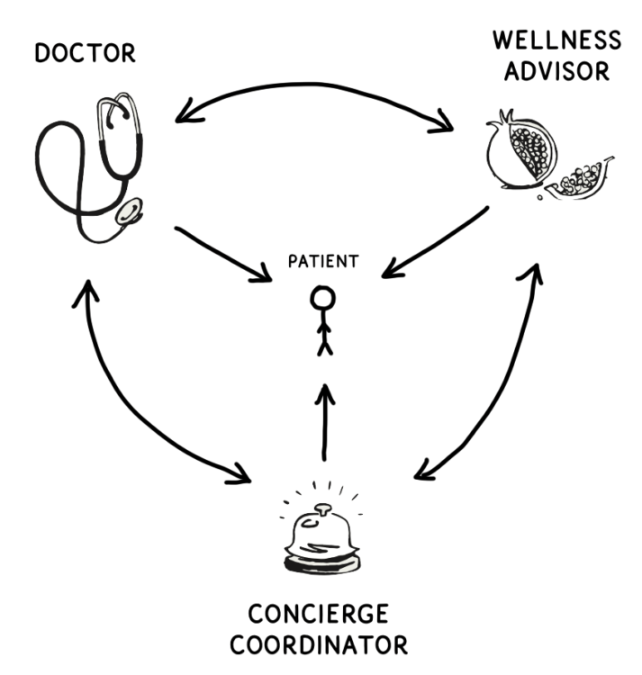 Doctor, wellness advisor, and concierge coordinator forming a circle of bidirectional arrows to show they communicate with each other. Patient stands in the middle with arrows from each of the three.